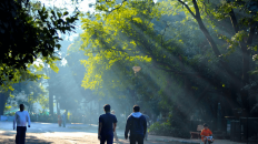 Cubbon Park | My Travel Memoirs