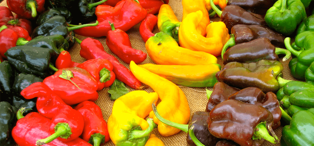 Most peppers with their bright colours signal presence of antioxidants
